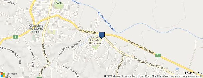 Localisation de Lycée général et TechnologiqueFAUSTIN FLERET - Cliquez pour voir l'itinéraire