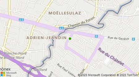 Plan d'accès au taxi Allo Taxi Gaillard Frontière