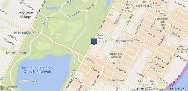 1 Gustave L Levy Pl New York, NY, 10029 Map