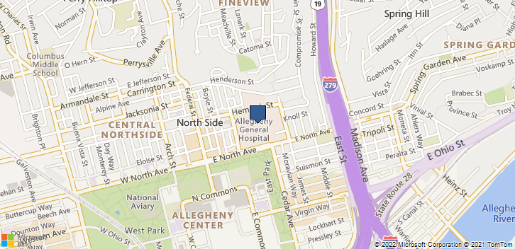 420 E N Ave Pittsburgh, PA, 15212 Map
