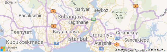 Gayrettepe, Istanbul, Turkey Map
